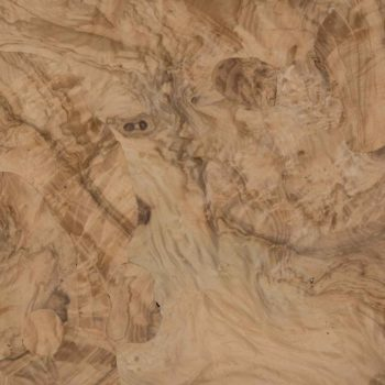JBR WOOD top radica di ulivo 35x55